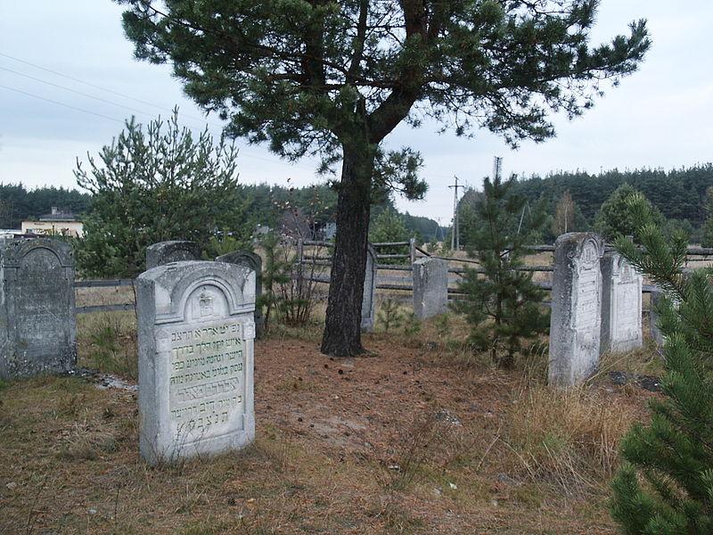 Zwierzyniec - miasto w województwie lubelskim, pow. zamojski, cmentarz żydowski