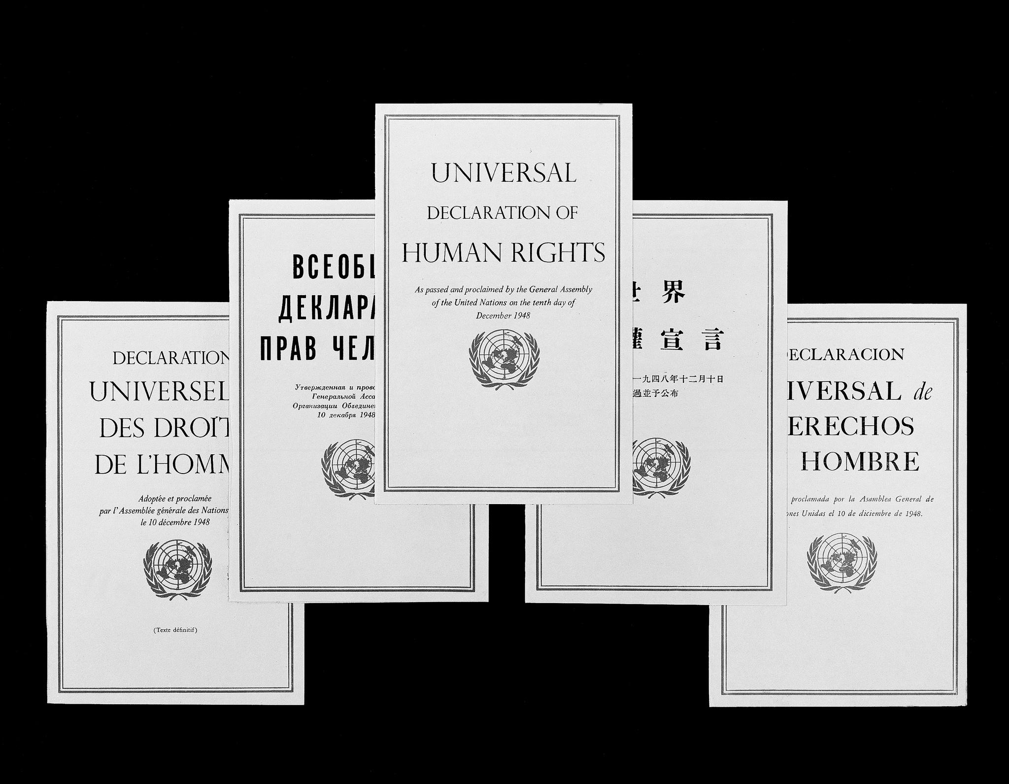 Powszechną Deklarację Praw Człowieka